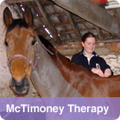 McTimoney Therapy